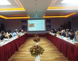 """Học giả nước ngoài bàn việc """"bảo vệ và phát huy giá trị văn hóa biển đảo Việt Nam"""""""
