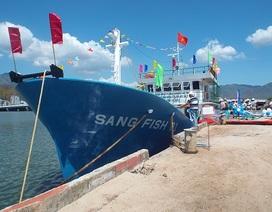 Đóng mới, nâng cấp 20 tàu cá đánh bắt xa bờ theo Nghị định 67