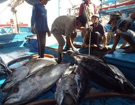Nhật Bản hỗ trợ 10 triệu USD xây Trung tâm nghề cá tại Việt Nam