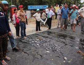 Đổ cá chết trước trụ sở UBND phường để phản đối ô nhiễm