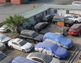 Rốt ráo xử lý xe ô tô Việt kiều nhập khẩu