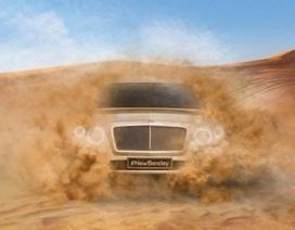 Hình ảnh đầu tiên của Bentley SUV
