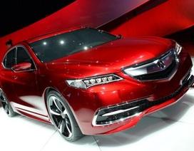 "Acura ra mắt ""tân binh"" TLX"
