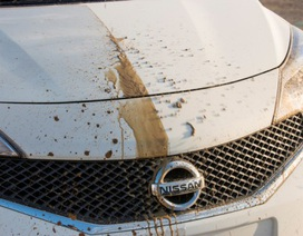 """Nissan thử nghiệm công nghệ sơn """"tự làm sạch"""""""