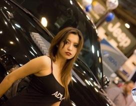 Những cô gái xinh đẹp tại Triển lãm ô tô Houston