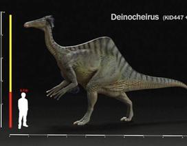 """Khám phá loài khủng long có hình dáng """"kì lạ"""""""