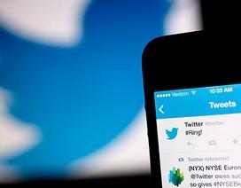 Rộ tin đồn Google muốn chi 50 tỷ USD để thâu tóm Twitter