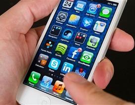 Apple đặt đơn hàng lớn nhất từ trước đến nay với iPhone thế hệ mới