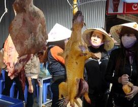Hà Nội cấm treo bán thịt động vật ở chùa Hương