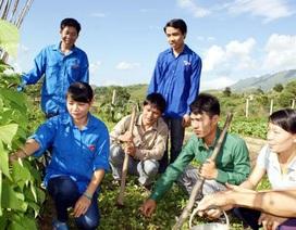 Bộ Nội vụ tuyển 500 tri thức trẻ về xã đặc biệt khó khăn