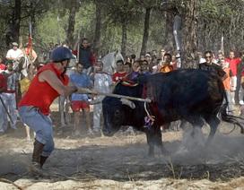 """Những lễ hội """"trảm"""" động vật tàn khốc trên thế giới"""