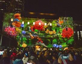 Lung linh lễ hội ánh sáng Vivid Sydney 2015