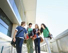 Thi chứng chỉ tiếng Anh quốc tế PTE A cho du học- làm việc- định cư