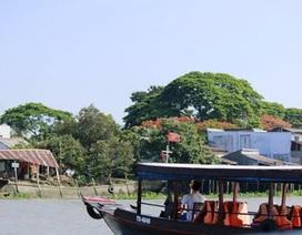 Du lịch Việt: Khổ từ tài xế đến nhà vệ sinh