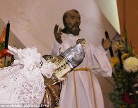 Thị trưởng cưới cá sấu để cầu may cho người dân