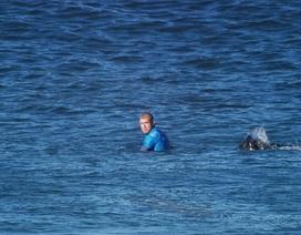 Vận động viên lướt ván tay không đánh trả cá mập