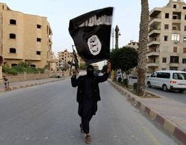 Mỹ: IS là nhóm khủng bố giàu nhất thế giới