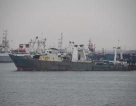 Mỹ điều lực lượng tìm tàu cá Hàn Quốc bị đắm