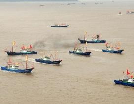 Đội tàu cá Trung Quốc càn quét khắp thế giới
