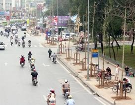 Hà Nội khẳng định cây trồng trên đường Nguyễn Chí Thanh là vàng tâm (!?)