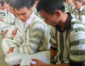 Gần 560 phạm nhân được giảm án, tha tù dịp Tết Nguyên đán