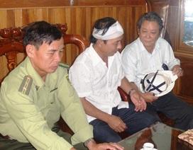 Lâm tặc tấn công giám đốc ban quản lý rừng phòng hộ