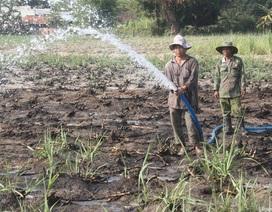 Giá nước sạch ở nông thôn cao gấp 10 lần thành phố