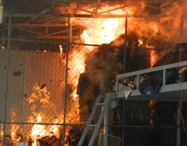 Giận mẹ, con trai phóng hỏa đốt cửa hàng nông sản