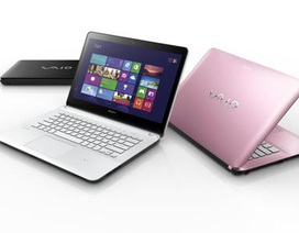 Sony ra mắt laptop VAIO Fit thế hệ mới