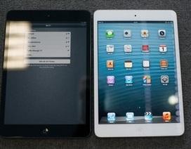 Giá iPad mini giảm sâu, người dùng vẫn thờ ơ