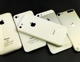 Cận cảnh lớp vỏ nhựa của iPhone giá rẻ
