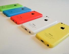 Apple giấu kín lượng đặt hàng trước của iPhone 5C vì ế ẩm?