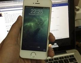 Viettel phủ nhận thông tin iPhone 5S có mặt tại Việt Nam