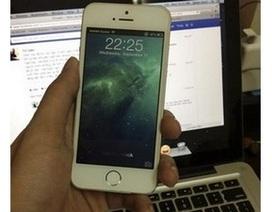 iPhone 5S đã có mặt ở Việt Nam, sẽ sớm được phân phối chính hãng?