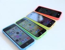 """Giá bán iPhone 5C """"thủng đáy"""", rẻ nhất khu vực"""