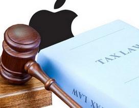 Apple bị điều tra tại Ý vì cáo buộc trốn thuế 1,34 tỷ USD