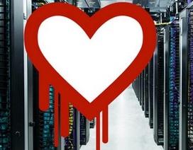 Các trang web hàng đầu thế giới đã phản ứng thế nào với Heartbleed?