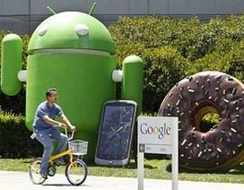 """Google và chế độ làm việc """"như mơ"""" dành cho nhân viên"""