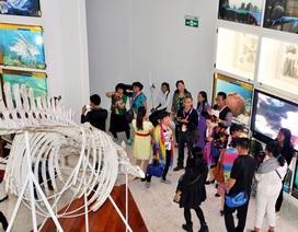 Những chuyển động mới của Bảo tàng Quảng Ninh trong hoạt động du lịch