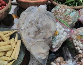Nguy cơ mang bệnh vì ăn nấm tươi không được bảo quản đúng cách