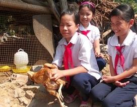 Con gà và hũ gạo tình thương