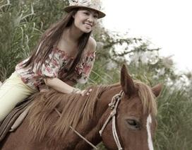 Năm Ngọ mạn đàm chuyện ngựa