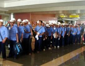Hàn Quốc không tuyển mới lao động Việt Nam