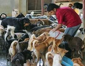 Việt Nam là một trong những trọng điểm buôn bán thịt chó
