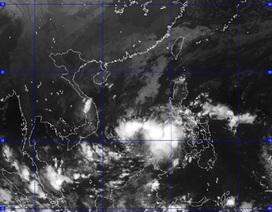 Lại thêm bão mạnh hướng vào vùng biển nước ta