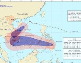 Bão số 12 suy yếu, đi vào đất liền các tỉnh Đà Nẵng - Bình Định