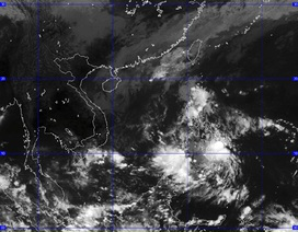 Bão số 12 đã suy yếu thành áp thấp nhiệt đới