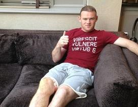 Rooney hy vọng sẽ trở lại vào cuối tháng 9