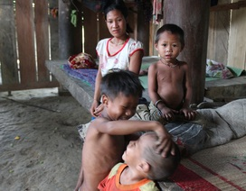 """Tộc người """"ngủ ngồi"""" ở Nghệ An: Lấy chồng từ thuở… 12"""