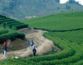 Phượt xe máy xuyên Việt miễn phí, ngại gì không thử?